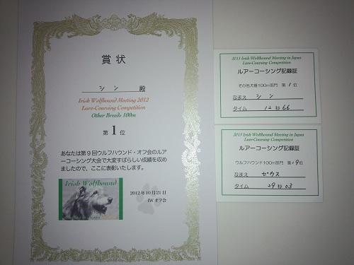 DSC_0282.jpg