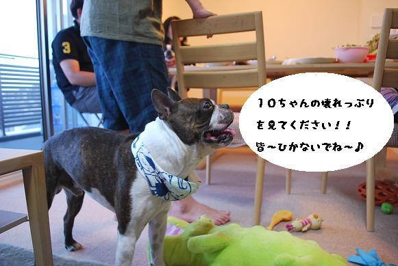 20120606DSC_0524.jpg