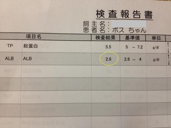 201211121112__.jpg