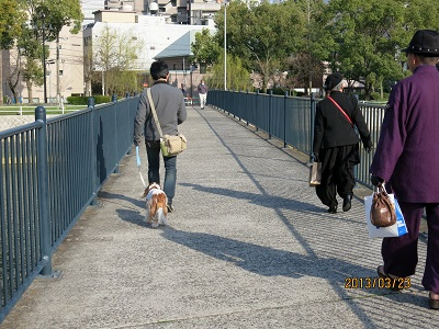 京橋沿い12
