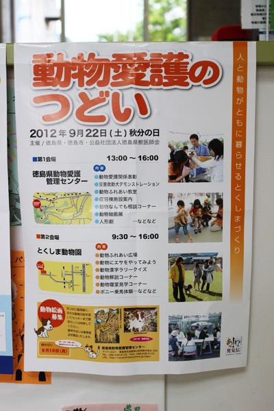2012_9_11_1.jpg