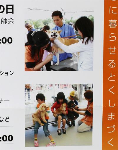 2012_9_11_2.jpg