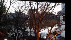 池之端ライブスペースQuiから見た不忍池