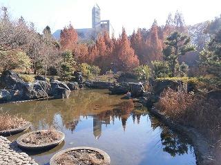 八雲神社池
