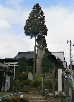 八雲神社全景