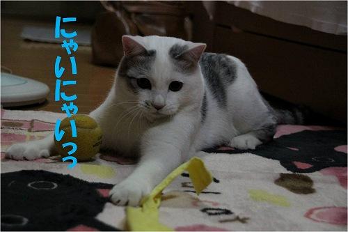 s-141213-5.jpg