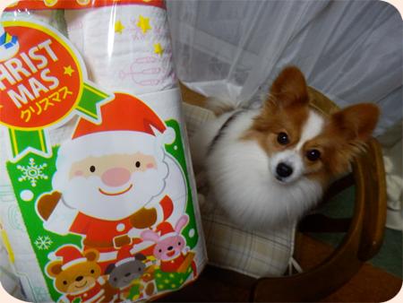 ☆;:*:;☆;:*:;☆ Merry X'mas☆;:*:;☆;:*:;☆
