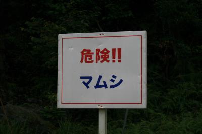 067_なんこう