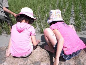 081_草刈り