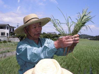 079_草刈り