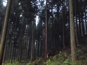 032_東山