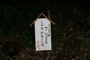 058_田んぼ3