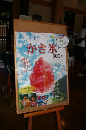 055_田んぼ4