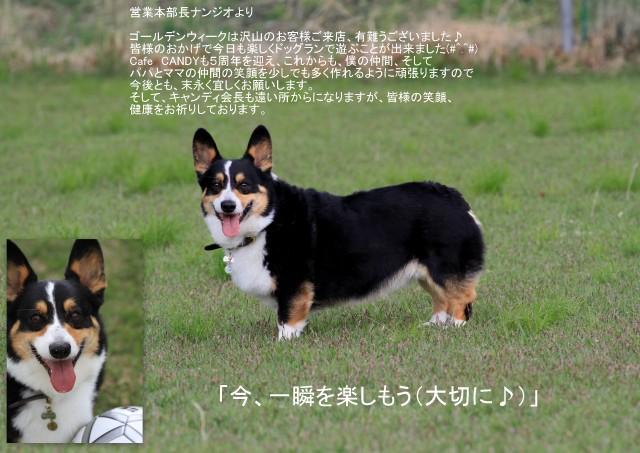 2012_03_25.jpg