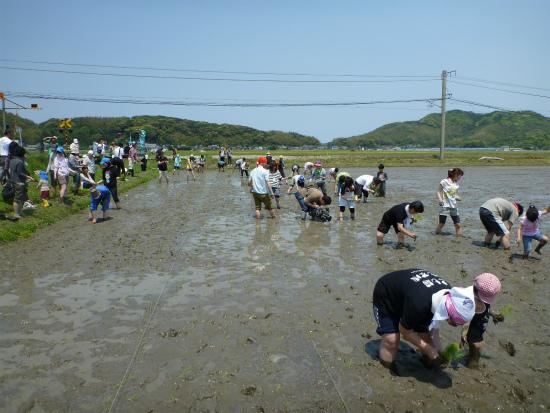 2012.05.09田植え6