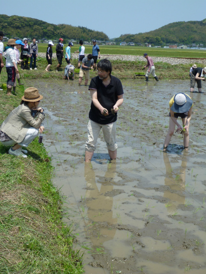 2012.05.09田植え2