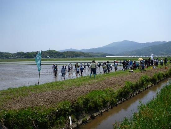 2012.05.09田植え111