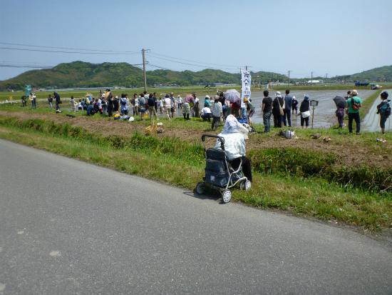 2012.05.09田植え222