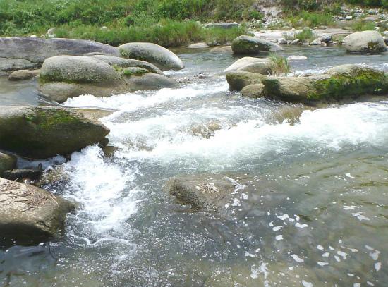2012.08.08水の中111