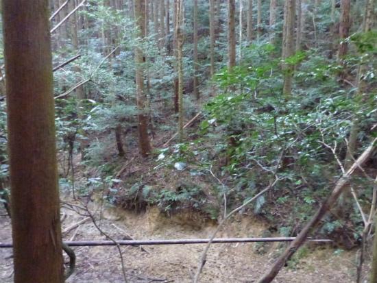 2012.11.02老い4