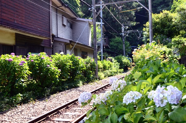20130605goryou001.jpg