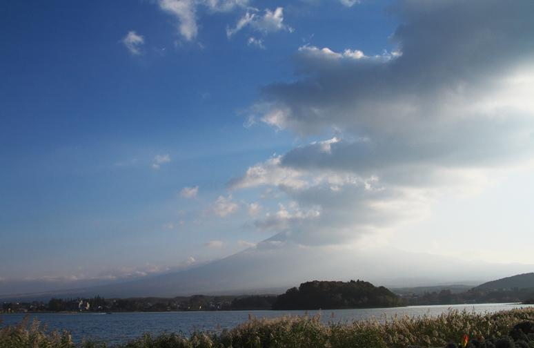 河口湖大石公園-787