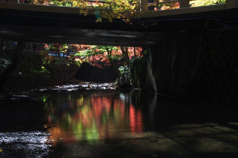 小国神社-356-1