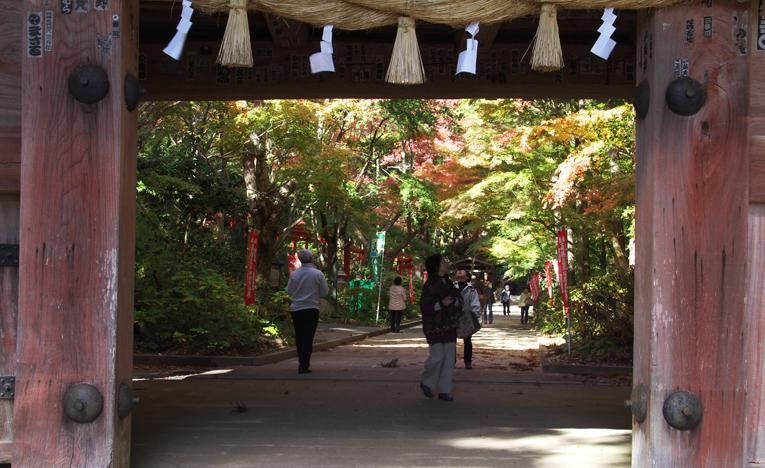 油山寺-499-9
