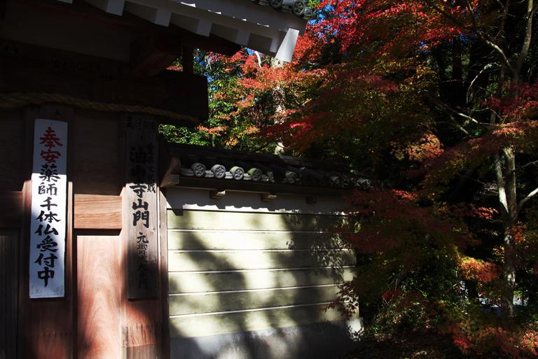 油山寺-503-2