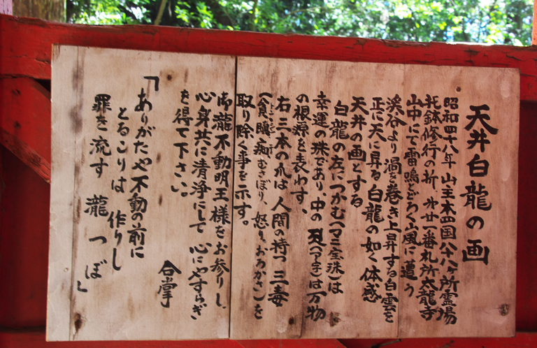 油山寺天井白龍 -519