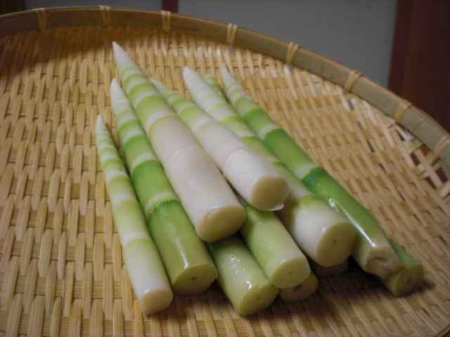 2012・竹の子.jpg