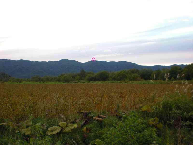 小平蘂岳.jpg