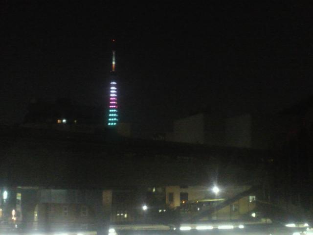 東京タワー (2)2012