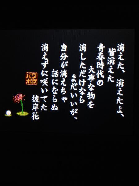 97_1_20121228193255.jpg