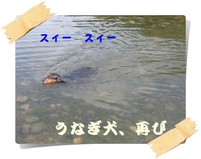 20120902-7.jpg