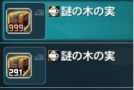 2012/12/08木の実