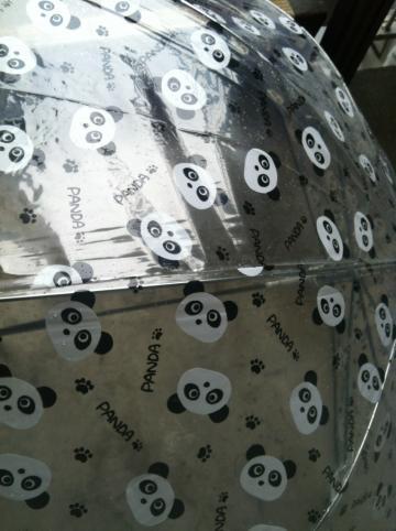 panda_convert_20120806150734.jpg