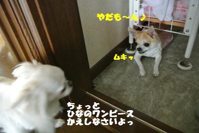 20130607+010_convert_20130607100540.jpg