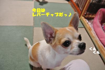20130620+004_convert_20130620111832.jpg