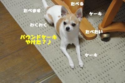 20130621+017_convert_20130621102223.jpg