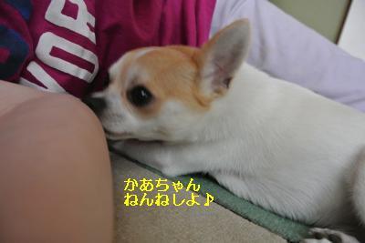 20130630+006_convert_20130630160205.jpg