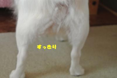 20130708+004_convert_20130708113943.jpg
