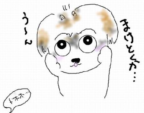 20120929n.jpg