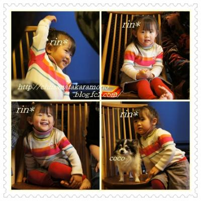 cats13_convert_20121214161447.jpg