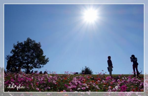 photo-550 花の丘にて3