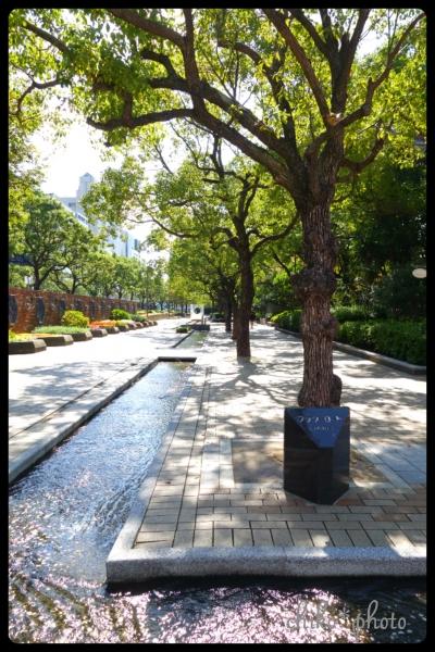 photo-559 神戸街角フォト9