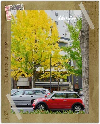 photo-589 大阪 街フォト_イチョウ並木2_1