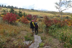 2012年10月ハイキング9