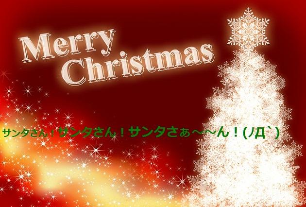 1211_03_hay_20121224155807.jpg