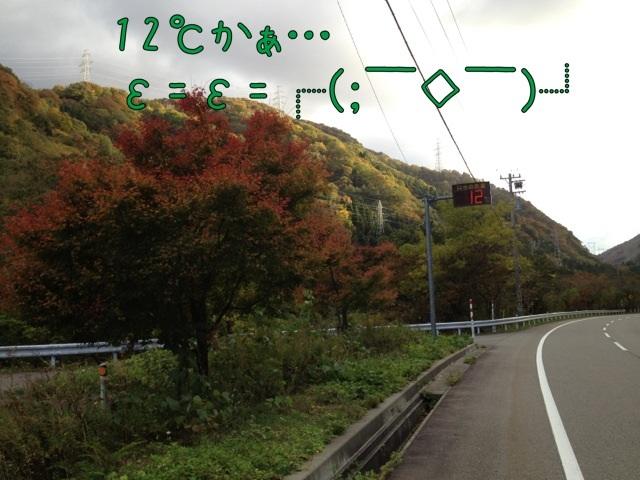 IMG_5334.jpg